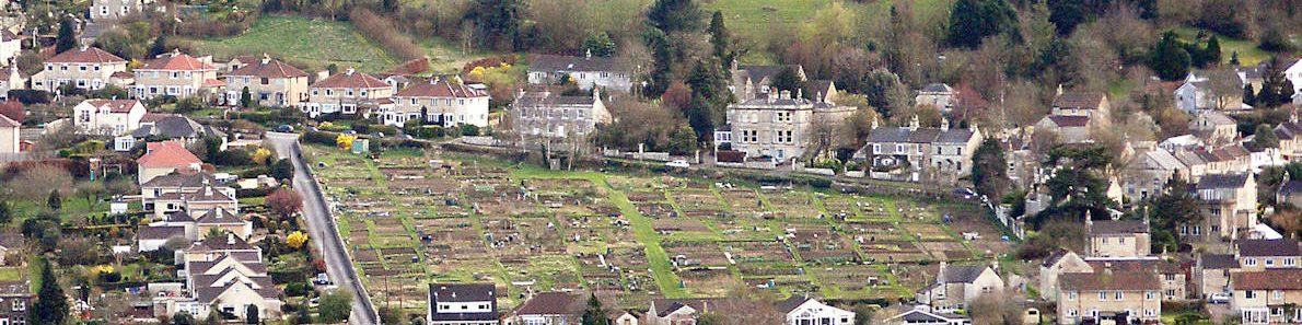 A view of Bathford allotments